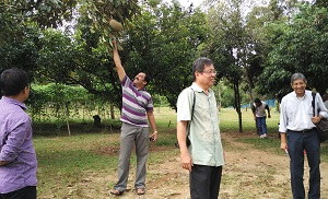 Anilal reaching for the King of Fruits